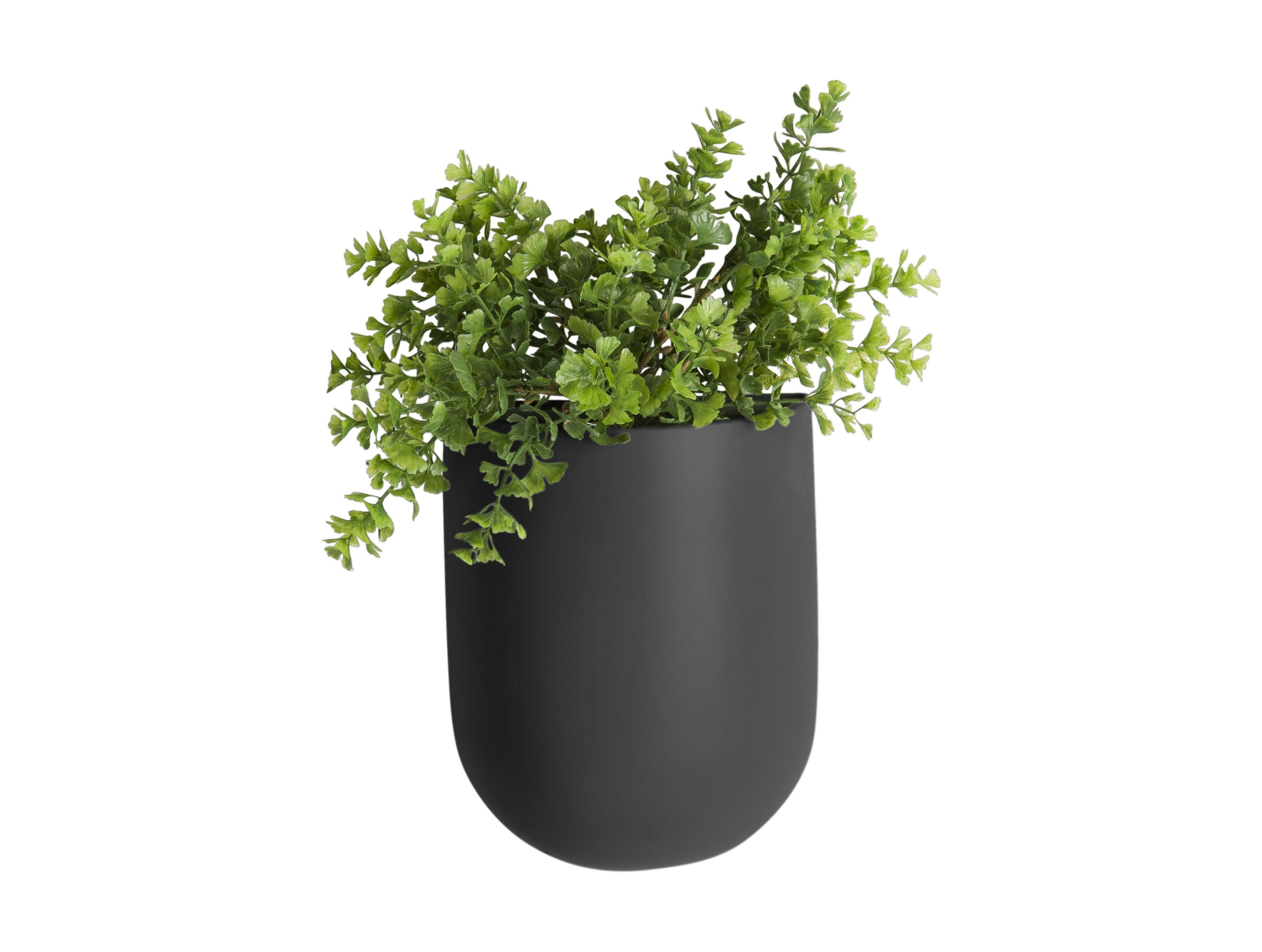 Wall plant pot Oval black